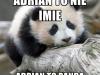 adrian10