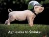 agnieszka6