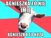 agnieszka9