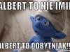 albert4