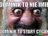dominik9
