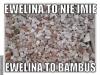 ewelina6