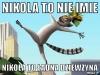 nikola10